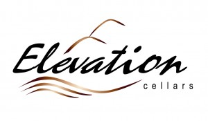 Elevation Logo 2014